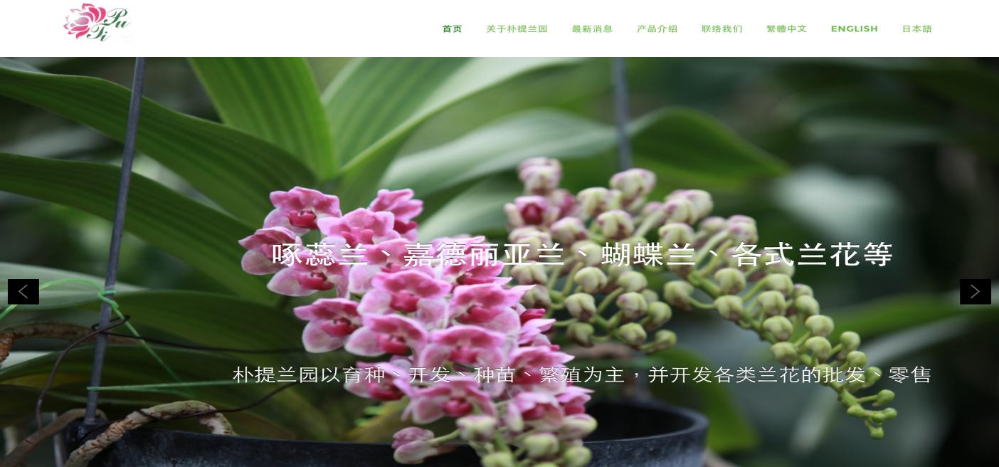 樸提蘭園 狐狸尾蘭 PuTi Orchids - 寇德網頁設計